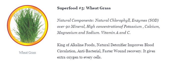 wheat101